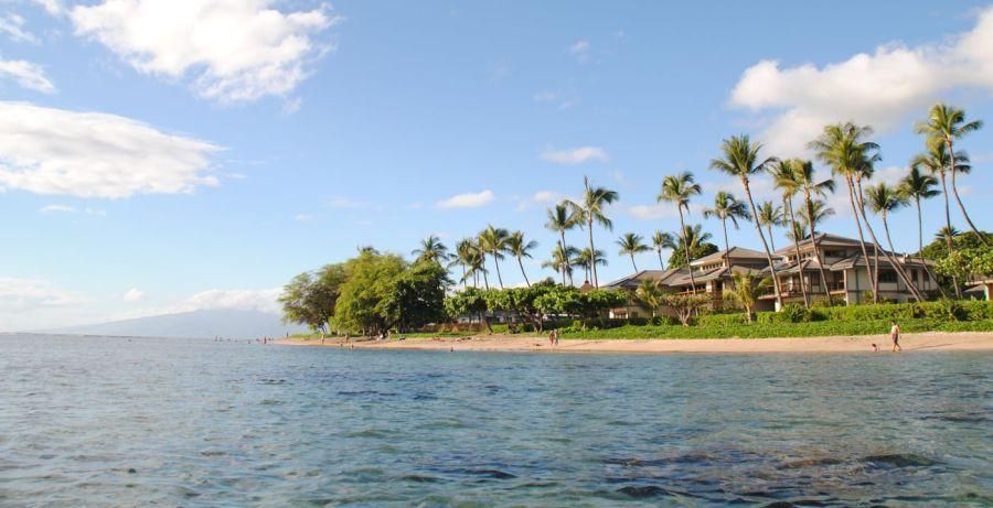 Der neue Stefan mit Husten auf Hawaii
