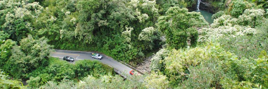 Der neue Stefan auf der Road to Hana auf Maui, Hawaii