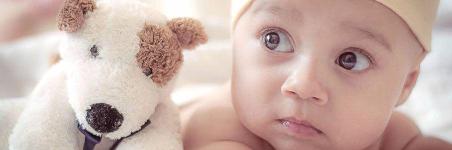 Neugeborenes liegt neben einem Plüschtier.