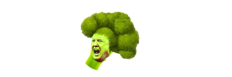 Bildmontage aus einem Brokkoli und dem Gesicht eines wütenden Politikers.